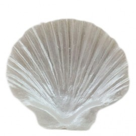 Concha branca 8,5x9cm batizado