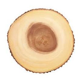 Base - tronco - expositor rustico diâmetro 29 cms alt. 2 cms