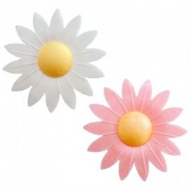 Flores em hóstia margaridas - brancas e rosas dekora (individual) - 4.5 cms
